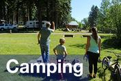 Camp sites at Harriman Springs Resort and Marina