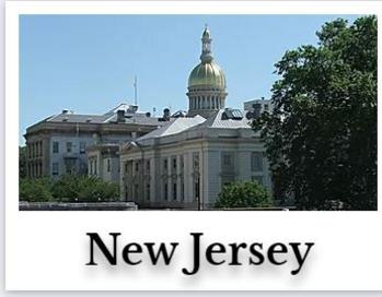 New Jersey Online CE Chiropractic DC Courses internet on demand chiro seminar hours for continuing education ceu credits