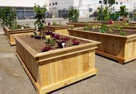 Custom Raised Gardens