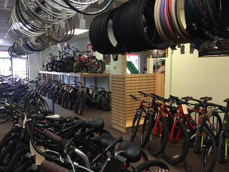 Used bikes for sale at our shop
