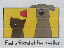 Martin County Animal Shelter