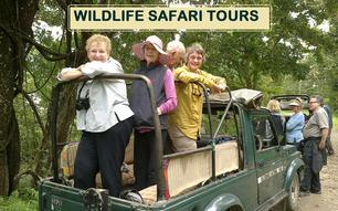 wildlife safari tour package for northeast india
