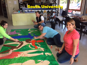 South University Behavioral Health Project