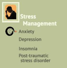 Stress management, Anxiety, Depression, Insomnia, Post-traumatic stress disorder