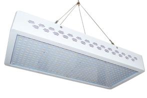 Factory LEDs Grow Light