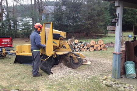 Stump Grinding Farmington CT