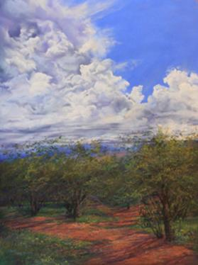 Summertime, plein air pastel skyscape by Texas artist Lindy Cook Severns