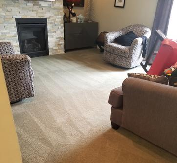 Photo of professional carpet cleaning in Bedford.