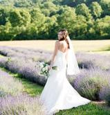 Lavender wedding, maryland wedding venue, frederick wedding venue, fredericks best event venue
