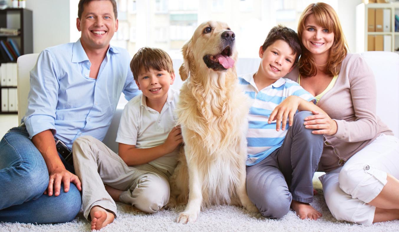 © Can Stock Photo / pressmaster / family carpet