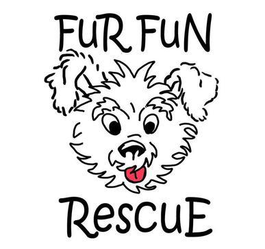 Fur Fun Rescue