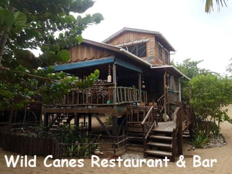 The restaurant, Wild Canes, is surrounded by palm trees and sea grapes. The second story features our Gumbo Limbo Lounge perfect for relaxing on your Belize vacation.
