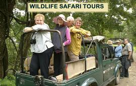 Wildlife Safari Tours in Northeast India