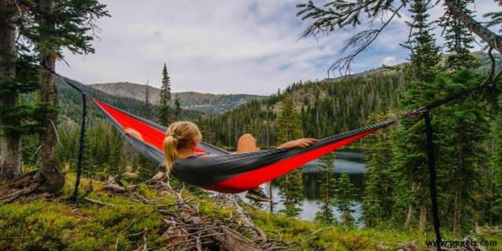 7 Great Health benefits of spending time in the forest