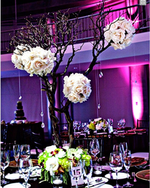 Rent A Centerpiece