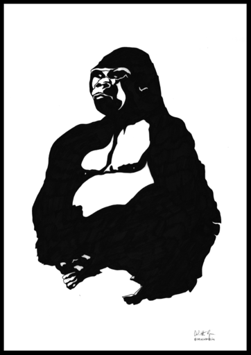 Orfhlaith Egan Irish Artist based in Berlin. Zoo Ink Drawings. Ivo Gorilla Berlin Zoo. Commission.