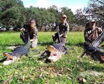 Alligator hunting in Okeechobee, Florida