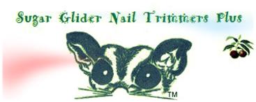 Sugar Glider Nail Trimmers Wodent Wheel
