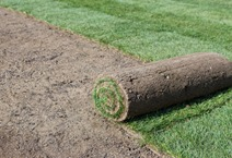 Sod Installation and Repair