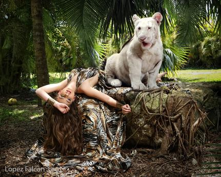 baby tiger quinceanera photoshoot sweet 15 miami tiger quince photo shoot 15 anos con tigre