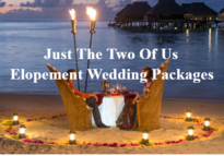 Just the Two Of Us Elopement Wedding Packages