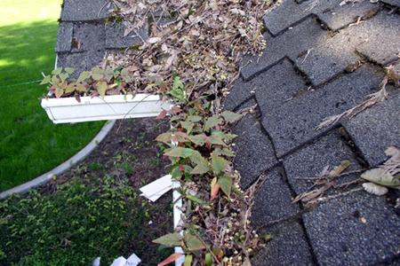 gutter cleaning, Lewiston, Maine