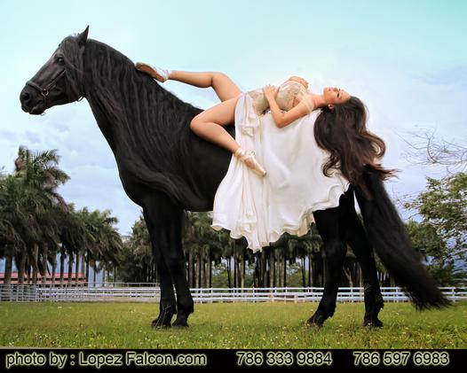 Quinces photography with Horses