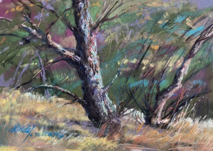 Singing Mossbacked Tree 4x6 plein air pastel Lindy C Severns