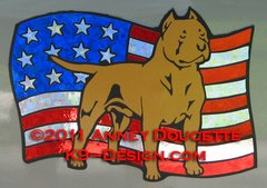 "American Staffordshire Terrier ""Pit Bull"" on USA American Flag Magnet - Choose Color"