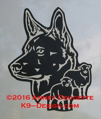 Australian Kelpie Headstudy With Sheep Magnet