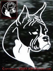 Boxer Headstudy Decal - Natural or Cropped Ears