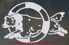 Border Collie Agility Decal