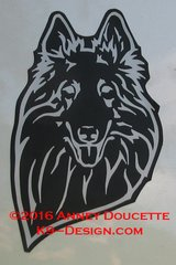 Belgian Sheepdog Headstudy with or without Sheep Magnet