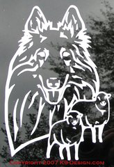 Belgian Tervuren Headstudy with or without Sheep Decal