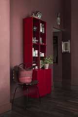 Rise Display Cabinet