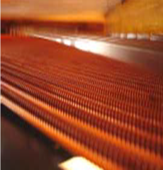 Complete New Set Of Grand Piano Strings