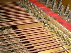 Broken Piano String In Bass on call