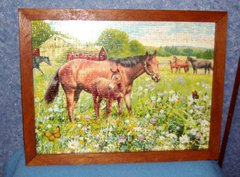 Framed Horse Puzzle Y778