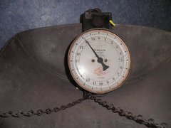 Hanson Scales B1325