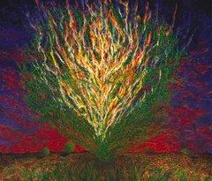 Bogdanow - Burning Bush