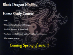 Complete Black Dragon Ninjitsu Home Study Course