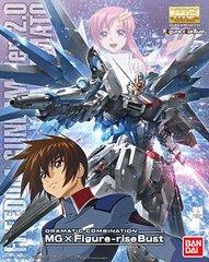 MG freedom Gundam with Kira Bust