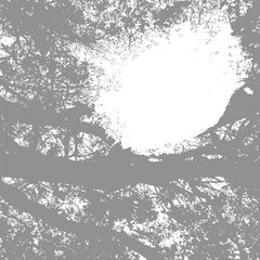 COMETS ON FIRE: Field Recordings From The Sun CD