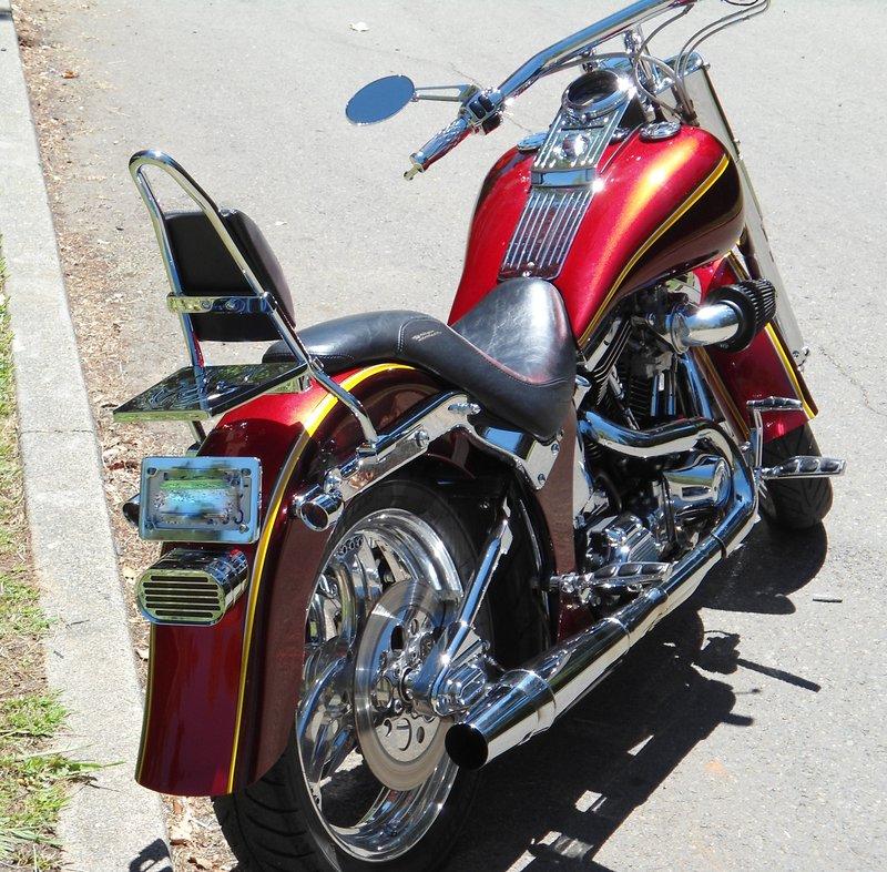 Harley Davidson & Custom Bike Pics