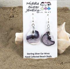 Quahog Beach Shell Earrings - CESH13