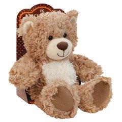 Aroma Home Cosy Hottie - Bear