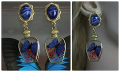 1152  Vivid Butterfly  Victorian Vase Blue Studs Earrings