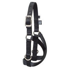 Sheep and Goat Treadmill Halter