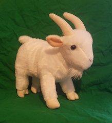 White Toy Goat