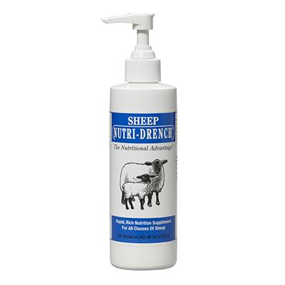 Sheep Nutri-Drench